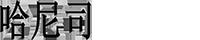 哈尼司_存储_上海伊球信息科技有限公司_U盘_移动硬盘