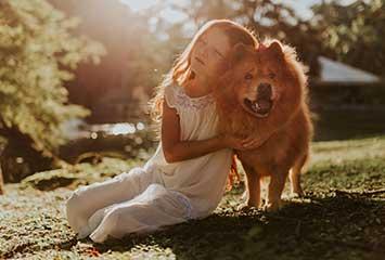 那个品种的狗狗最听话、最好养?